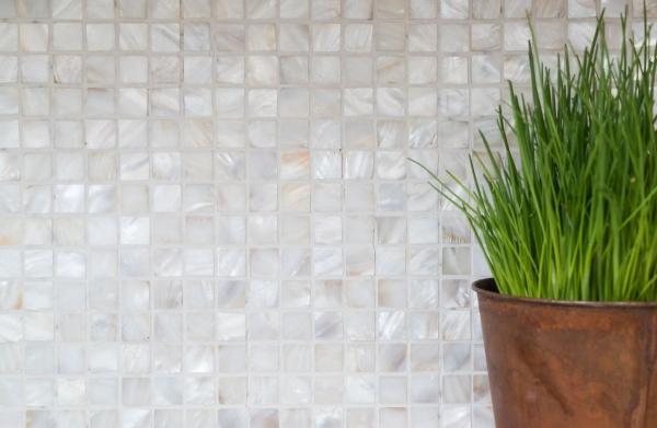 Mosaik Fliese Muschel permutt Wandfliesen Badfliese MOS150-SM2525/_m