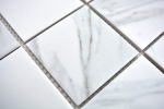 Mosaikfliese Carrara weiß grau Keramik Badfliese Fliesenspiegel Küche MOS16-0102_m