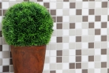 Mosaikfliese Keramik grau khaki beige weiß glänzend Fliesenspiegel MOS18-0213_m