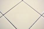 Mosaik Fliese Keramik beige glänzend Fliese WC Badfliese MOS23-1201_m