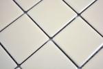 Mosaikfliese beige magnolia matt Fliesenspiegel Küchenrückwand MOS14-1911_m