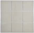 Mosaik Fliese Keramik schlamm glänzend Fliese WC Badfliese MOS23-2401