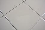 Mosaik Fliese Keramik schlamm glänzend Fliese WC Badfliese MOS23-2401_m