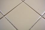 Mosaik Fliese Keramik schlamm matt Fliese WC Badfliese MOS23-2411_m