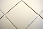 Mosaik Fliese Keramik hellbeige unglasiert Duschtasse Bodenfliese MOS22-1202-R10_m
