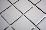 Mosaik Fliese Keramik hellgrau unglasiert Küchenrückwand Spritzschutz MOS14-1202_m