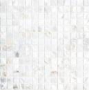 Mosaik Fliese Muschel perlmutt Wandfliesen Badfliese MOS150-SM201