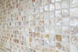 Mosaik Fliese Muschel hellbeige Wandfliesen Badfliese MOS150-SM203_m