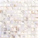 Mosaik Fliese Muschel permutt Wandfliesen Badfliese MOS150-SM2525