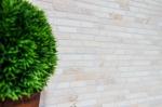 Mosaik Fliese Marmor Naturstein weiß Brick Botticino Anticato MOS40-0102_m