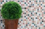 Mosaik Fliese Marmor Naturstein creme beige rot grün Random MOS38-1204_m