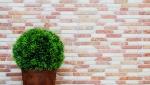 Mosaik Fliese Marmor Naturstein beige rot Brick RossoCream MOS40-0135_m