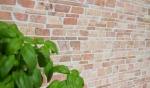 Mosaik Fliese Marmor Naturstein rot Brickmosaik Rossoverona MOS40-0220_m