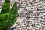 Mosaik Fliese Marmor Naturstein beige Brick Castanao MOS40-0185_m
