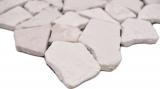 Handmuster Mosaik Fliese Marmor Naturstein hellbeige Bruch Ciot Biancone MOS44-30-100_m